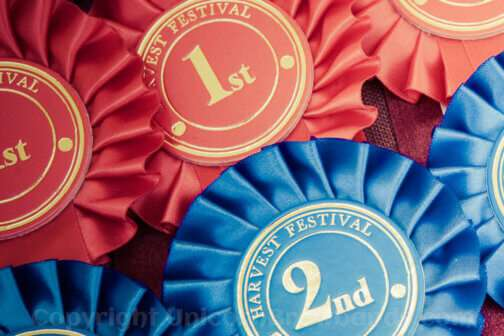 1st & 2nd place rosettes | Unicorn Browbands | Bling Browbands